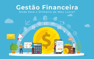Gestao Financeira Onde Esta O Dinheiro Do Meu Lucro Blog Liz Assessoria Financeira - PORTAL CONTABILIDADE