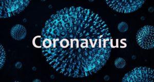 Coronavirus 1 Notícias E Artigos Contábeis Em Santos | Portal Contabilidade - PORTAL CONTABILIDADE